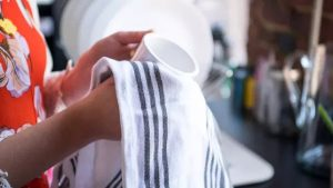 Kitchen Towels vs. Dish Towels