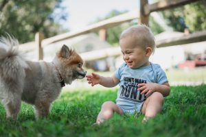 Baby petting a dog while wearing a customized onesie